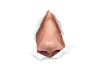 Aufklärungsfehler – Organisationsfehler – Schadensersatz: Nase